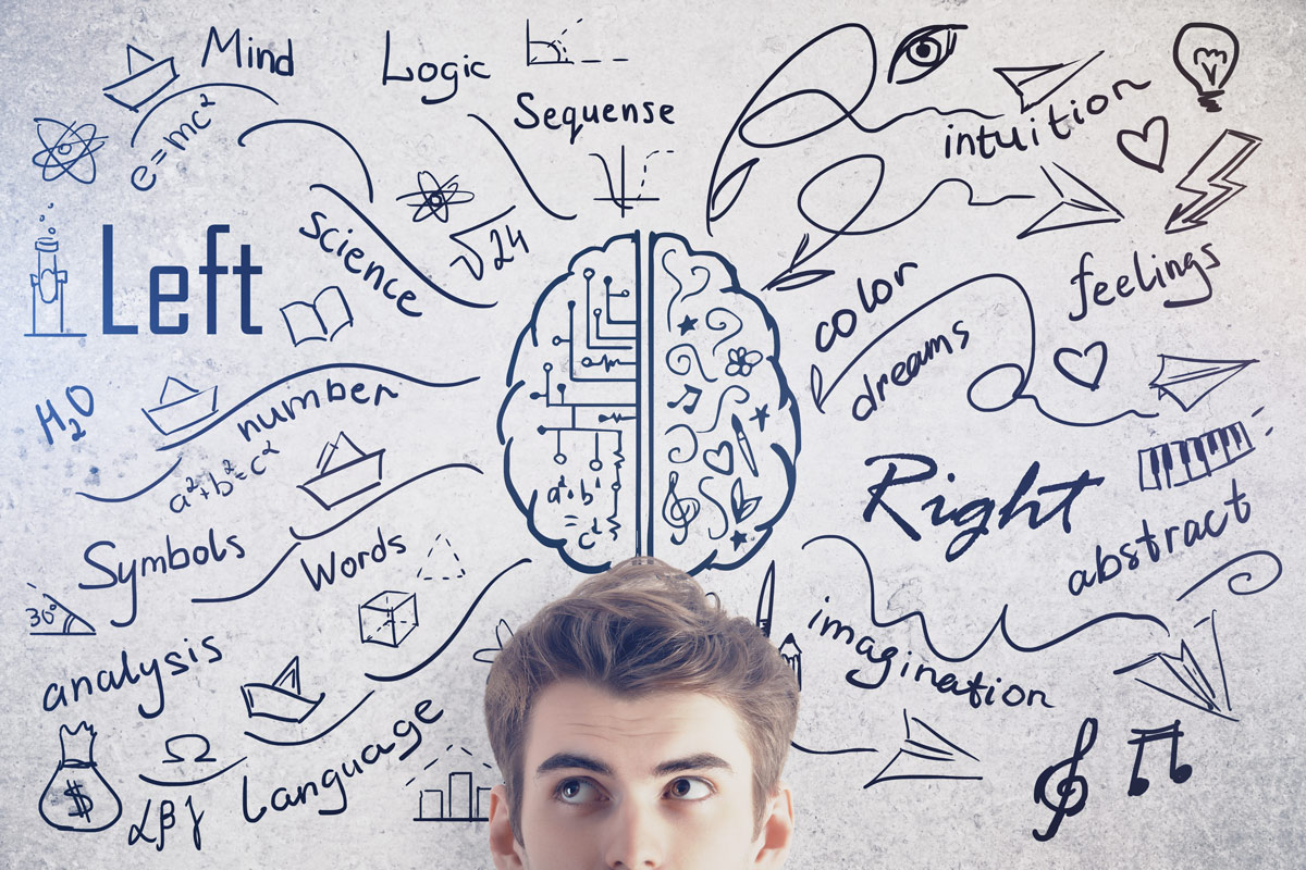 Man standing by a drawing of right and left brain